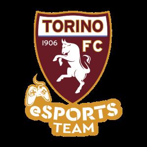 Torino eSports